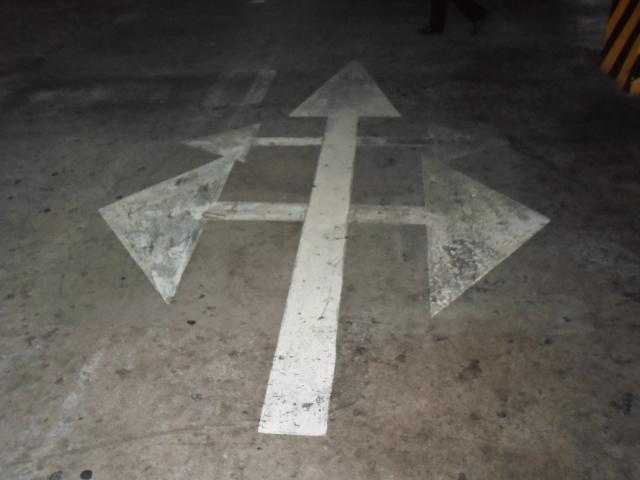 Vectors, Choices, manifestation